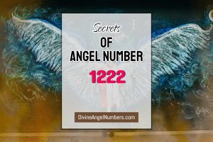 5 Reasons Why You Are Seeing Angel Number 1222 - Meaning Of 1222