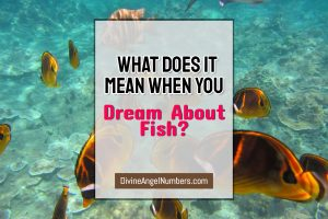 What Does it Mean When You Dream About Fish?