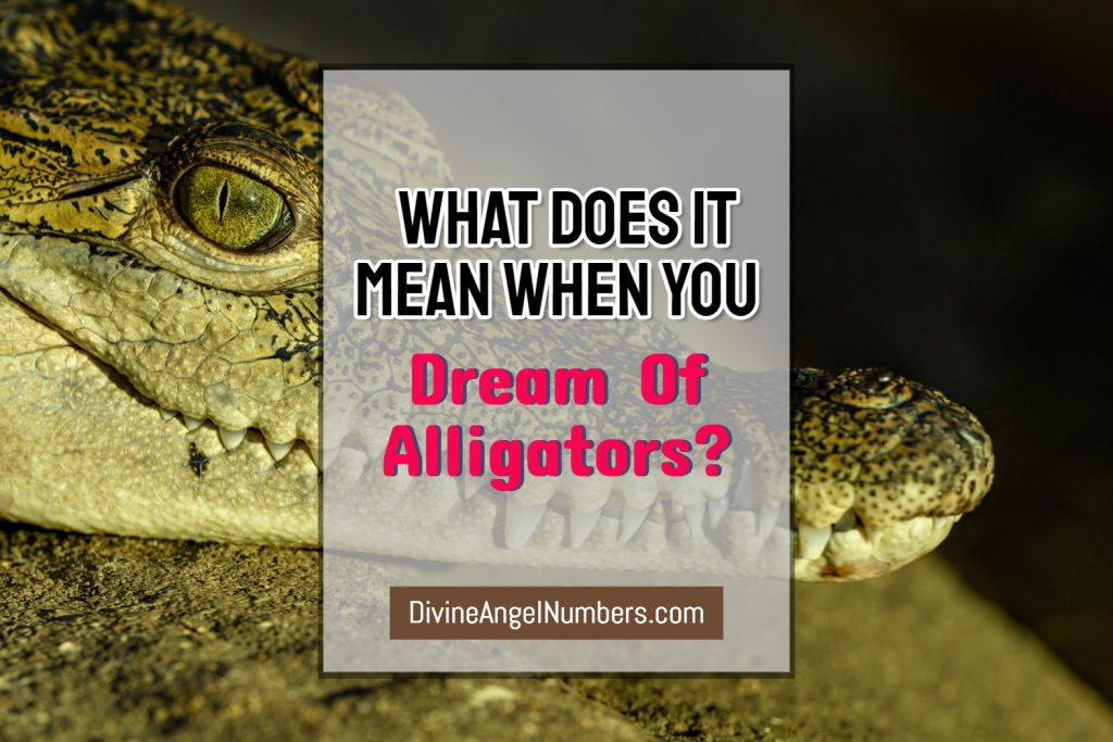 Dreams About Alligators & Crocodiles