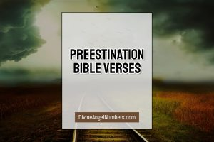 Predestination Bible Verses