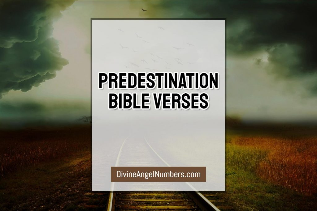 80+ Graceful Predestination Bible Verses