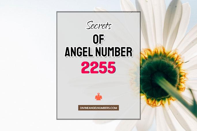 2255 Angel Number: Meaning & Symbolism