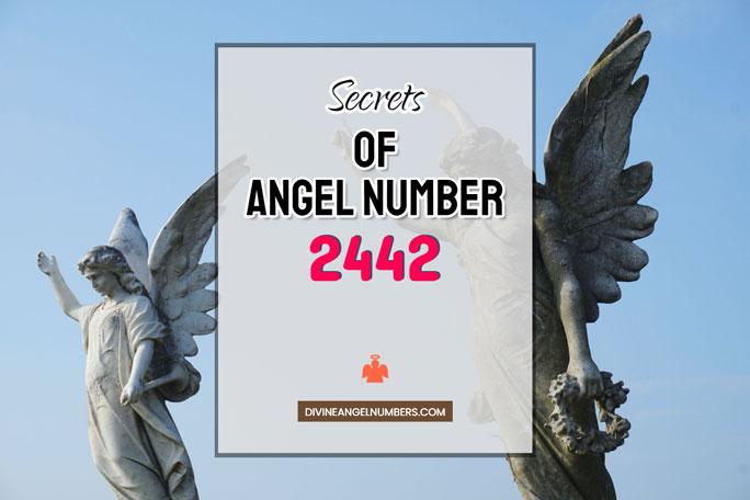 2442 Angel Number: Meaning & Symbolism