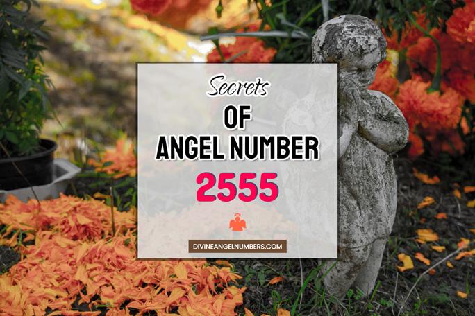 2555 Angel Number: Meaning & Symbolism