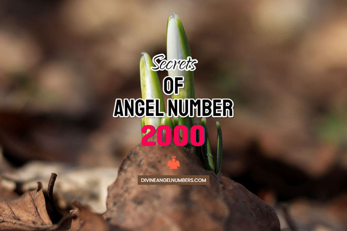 2000 Angel Number: Meaning & Symbolism