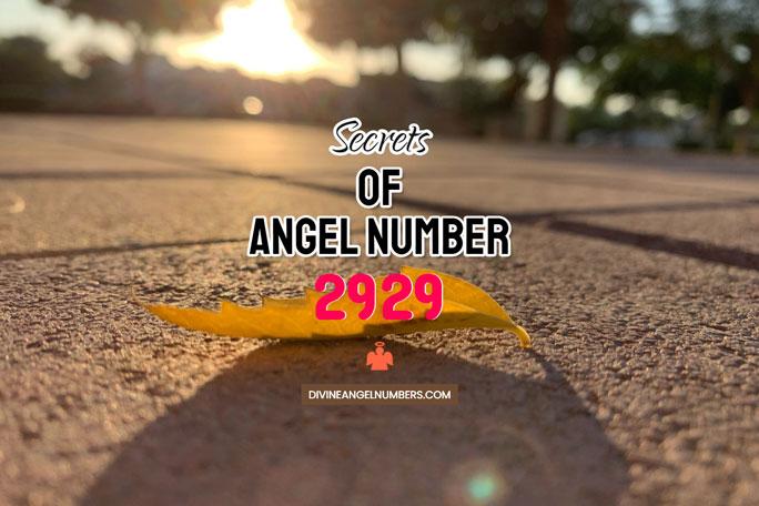 2929 Angel Number: Meaning & Symbolism